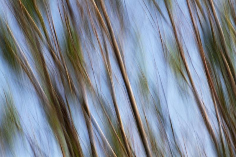 _MG_8575Motion Blur- tekniikka
