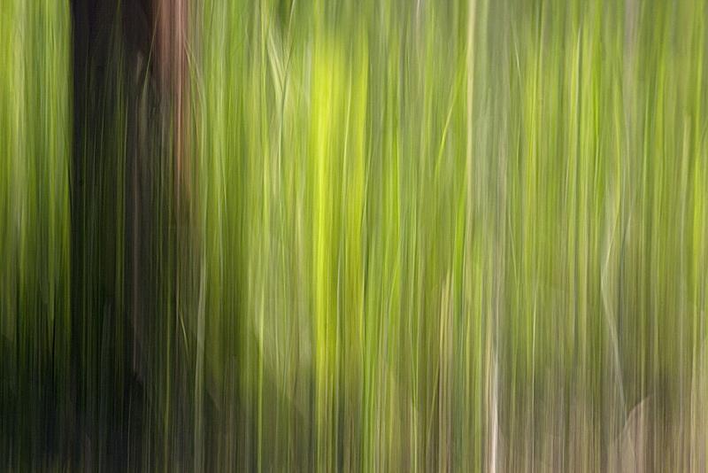 _MG_8594Motion Blur- tekniikka