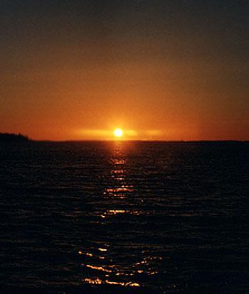 auringo